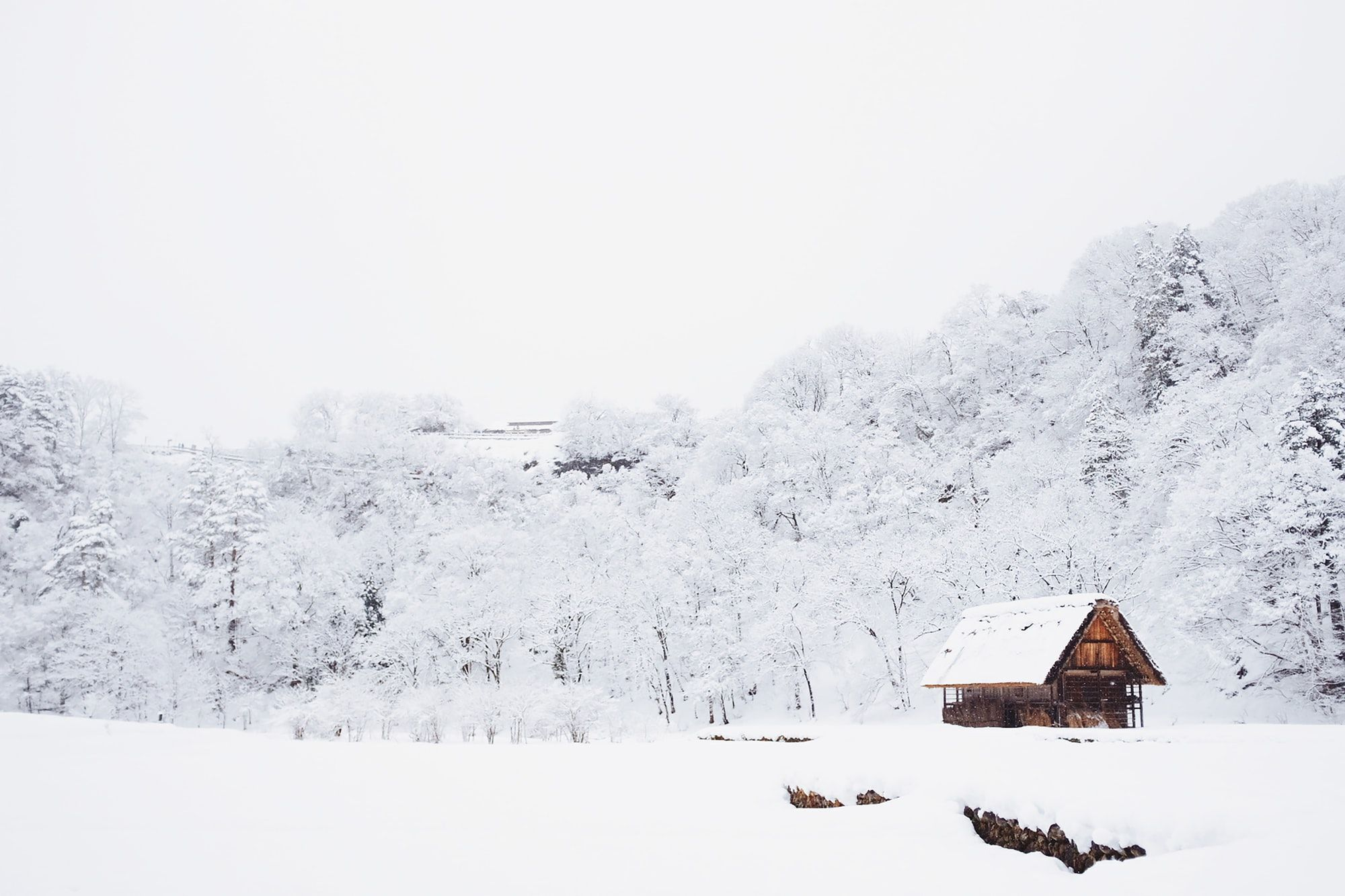 Winter Wonderland in Shirakawa, Japan